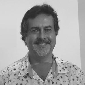 Britaldo Soares Filho